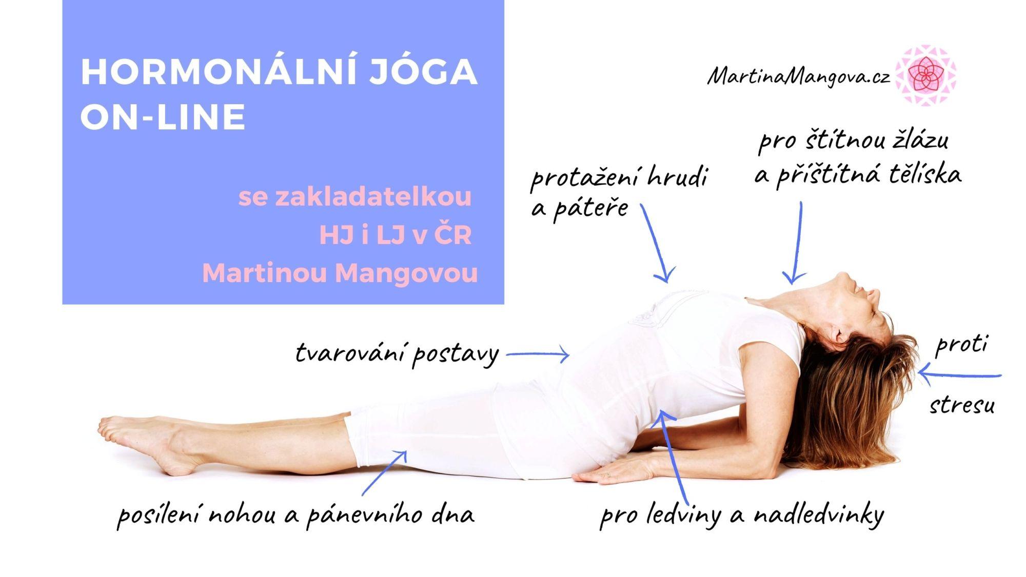 Platba zaonline Hormonální jógu